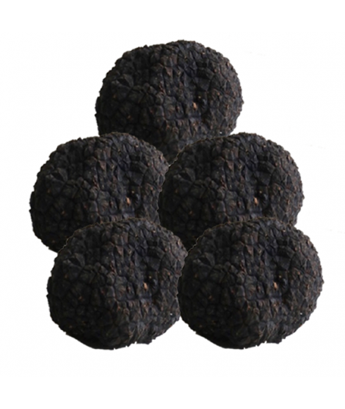 Sommertrüffel 0,5 kg (Aestivium-Trüffel)