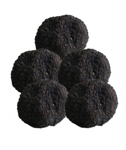 Truffe d'été 0,5 kg (truffe Aestivium)