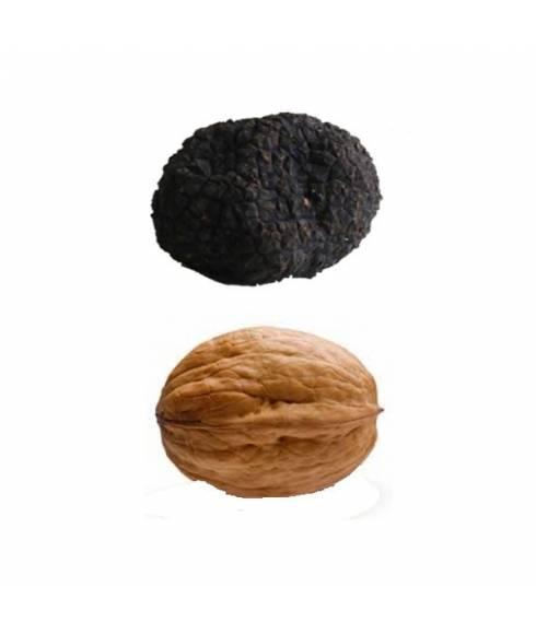 Truffle Uncinatum - Autumn truffle M - 40gr