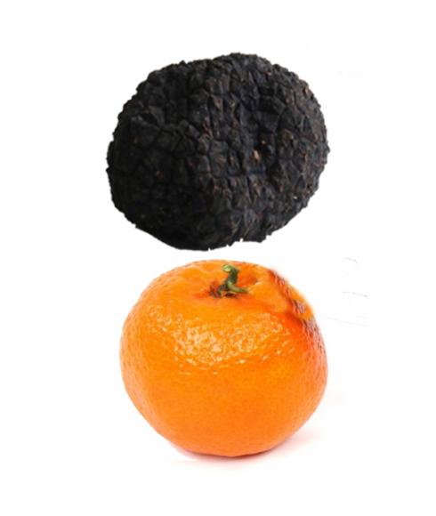 Truffle Uncinatum - Autumn truffle XL  - 100gr
