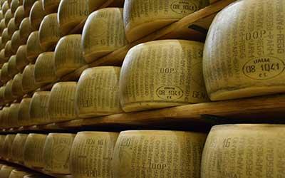 almacén de quesos en estanterías.